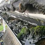 gutter cleaning in Darlington - before